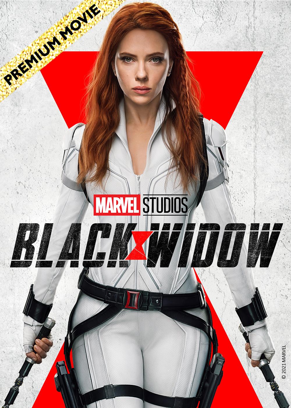 Banner poster blackwidow
